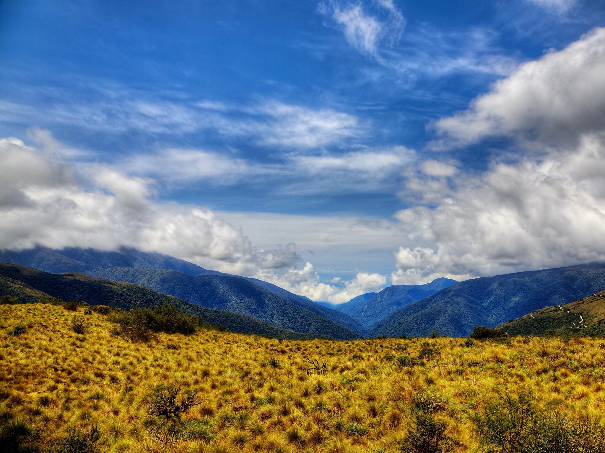 . Parque Nacional del Manu .